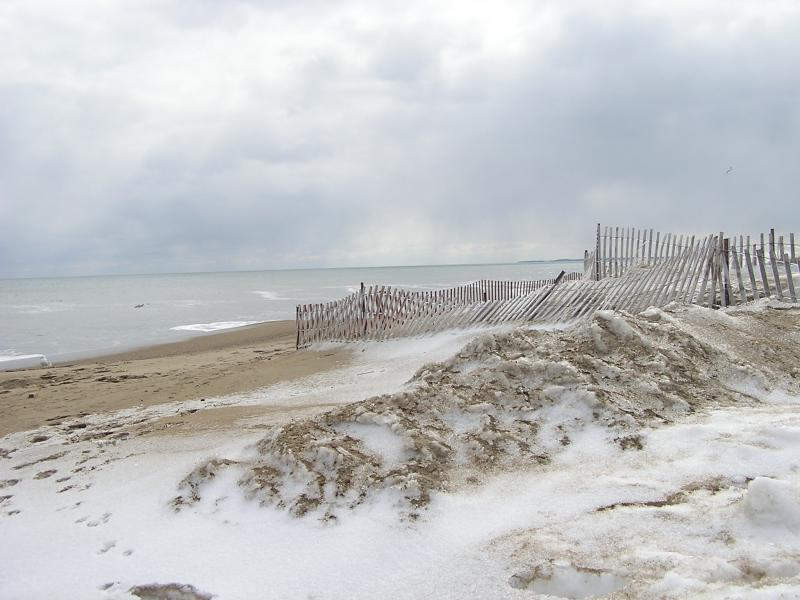 The Winter Beach